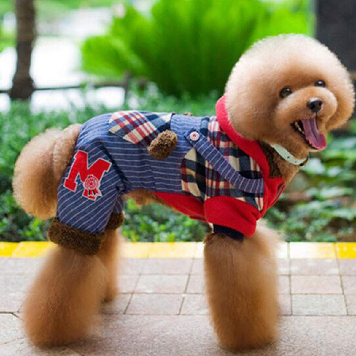 Red M Red M Pet Dog Autumn and Winter Clothing, Small and Medium Dogs Plus Velvet Cotton Coat (color   Red, Size   M)