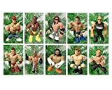 WWE Wrestling Set of 10 Wrestler Holiday Christmas Tree Ornaments Featuring RANDOM 2'' WWE Characters with No Duplicates - Shatterproof Plastic Ornaments are Perfect for Kids Tree or Desk Office Tree