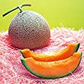 RARE Yubari King Melon 10 Seeds -$12,000 per Fruit