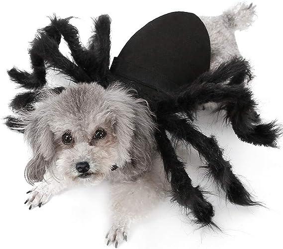 Halloween Ropa Perro Gato Invierno Calentar, Morbuy Cosplay Araña ...