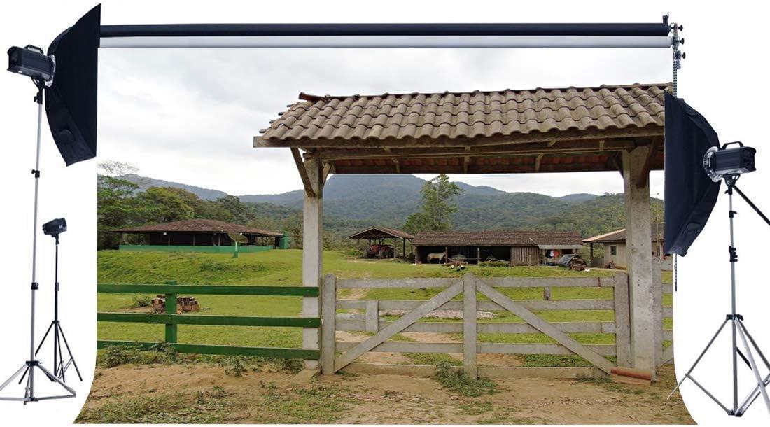 JoneAJ Tierras labranza Rurales Telón Fondo 9X6FT Vinilo Shabby Antiguo Granero Telones Fondo Coche montaña Montaña Verde Hierba Prado Puerta Madera Naturaleza Paisaje Fondo para Tour Turismo Foto: Amazon.es: Electrónica