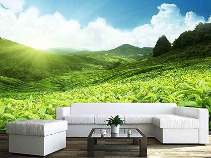 Amazon Com Wall26 Tea Plantation Cameron Highlands Malaysia