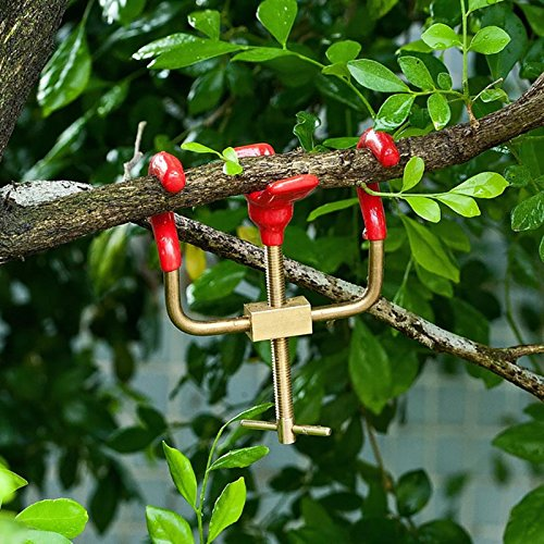 Bonsai Branch Bender Exceptional Wonderful Gyrate Installation Brass Material Made By Tian Bonsai Tools by Branch Bender