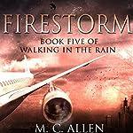 Firestorm   M.C. Allen