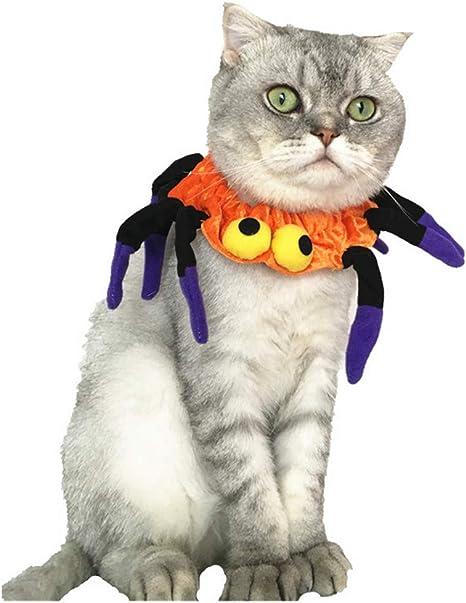 POPETPOP Gato araña Disfraz-araña Halloween Halloween Corbata para ...