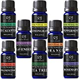 Aromatherapy Top Essential Oils Set 100% Pure & Therapeutic Grade - Basic Sampler Gift Set & Kit (Lavender, Tea Tree, Eucalyptus, Lemongrass, Orange, Peppermint, Rosemary, Frankincense)