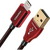 AudioQuest 0.75m Cinnamon Lightning 0.75m USB A Lightning Black