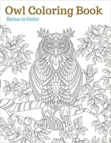 Amazon Com Owl Coloring Book Owl Adult Coloring Book Owls