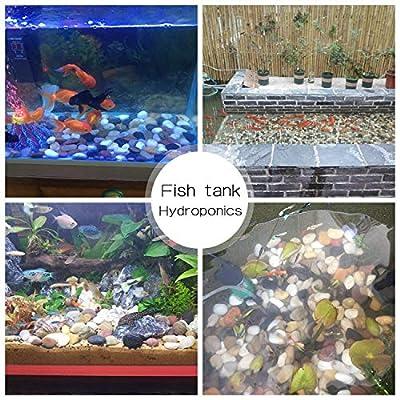 OUPENG Aquarium Gravel River Rock - Natural Polished Decorative Gravel, Small Decorative Pebbles, Mixed Color Stones,for Aquariums, Landscaping, Vase Fillers 2 Pounds (32-Oz)