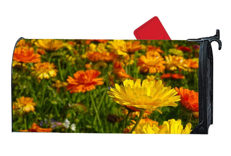Marigold Flowers Blütenmeer