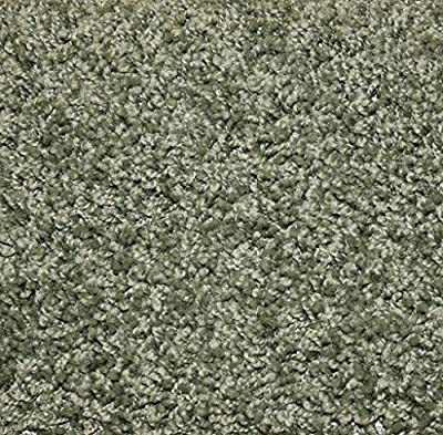 """Sage Area Rug Carpet. MULTIPLE SIZES, SHAPES and COLORS TO CHOOSE FROM. Home area rugs, runner, rectangle, square, oval and round. Hem-stitching on all four sides. 25 oz. Face Weight. 1/2"""" Thick. Polyester. Loose and Soft Frieze."""