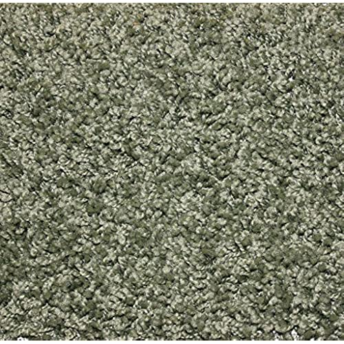 8x10 Rugs Sage Color Amazon Com