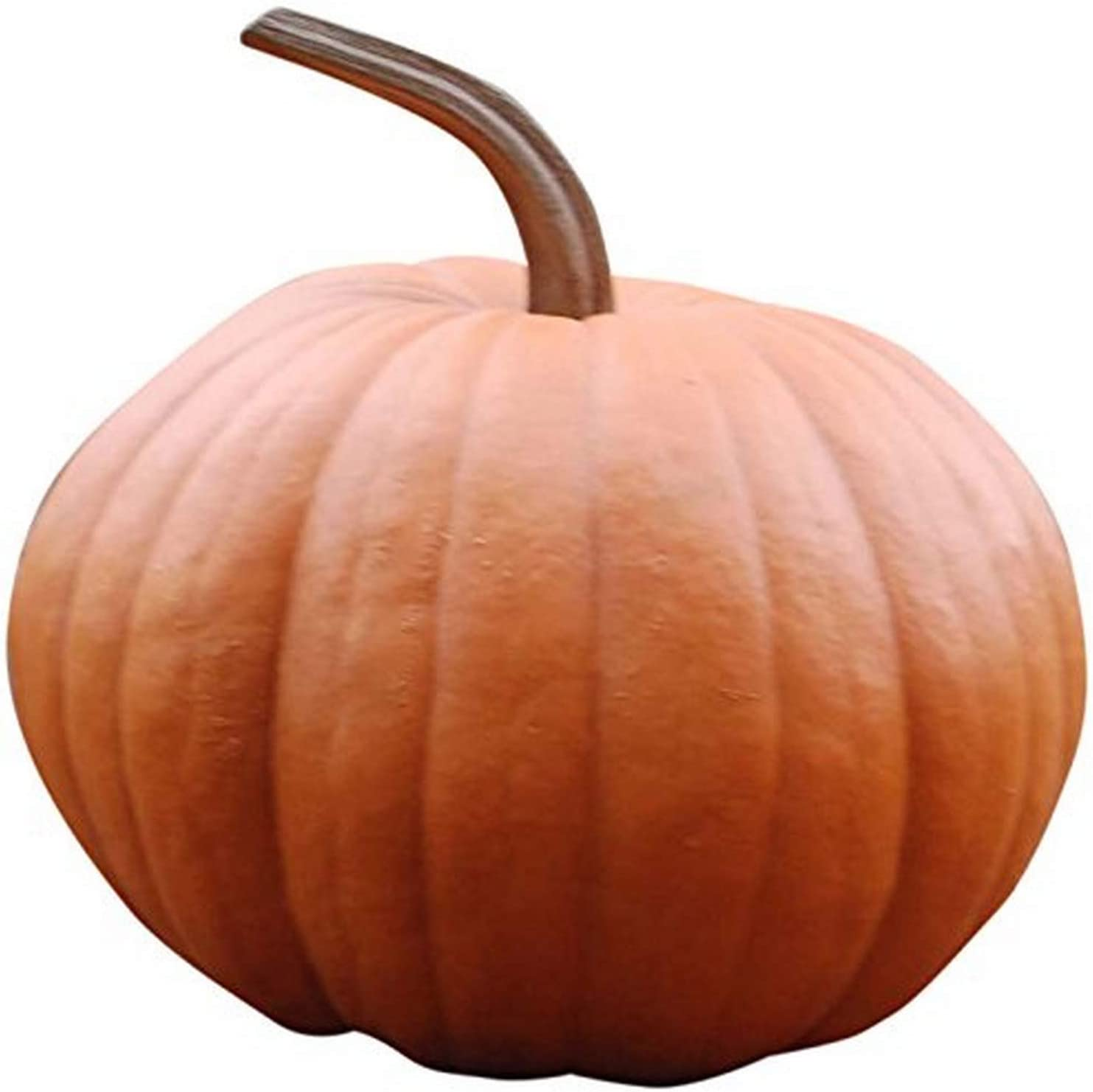 Hickory Manor House Classic Boo Fall Harvest Pumpkin for Home Decor
