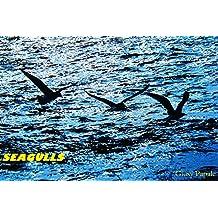seagulls (LUCENTISMO Vol. 6) (Italian Edition)