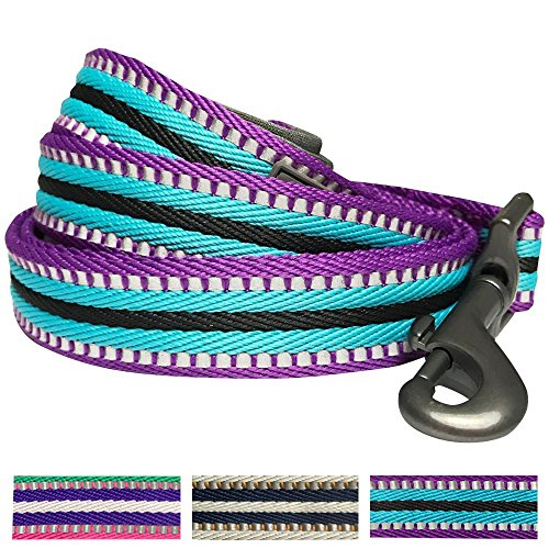 Blueberry Pet Reflective Multi colored Comfortable