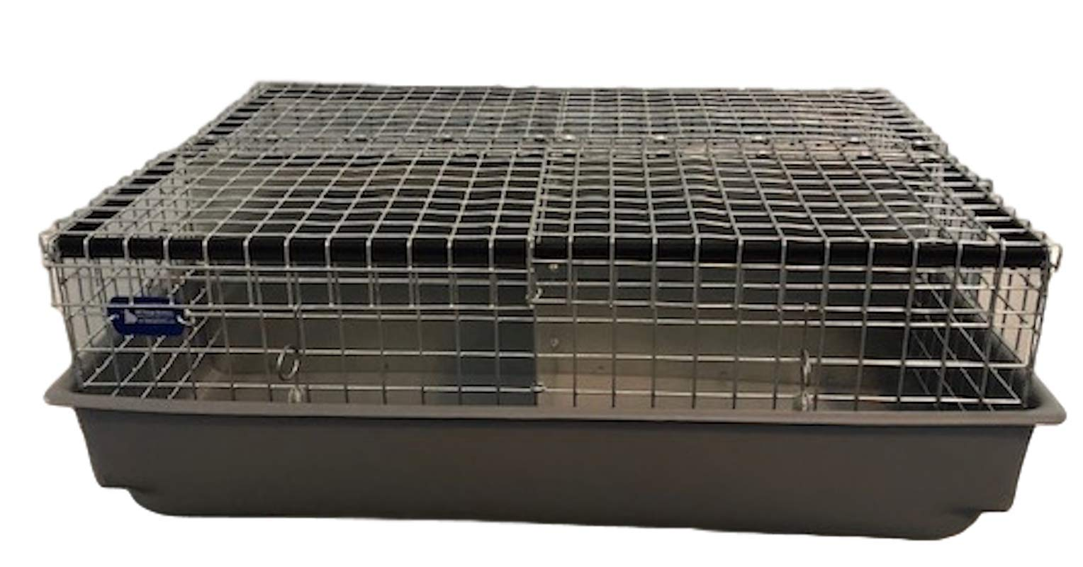 All Things Bunnies 4 Hole Cavy/Chinchilla Carrier/Transport Cage by All Things Bunnies
