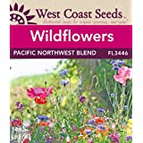 Wildflower Seeds - Pacific Northwest (approx. 5000 seeds)