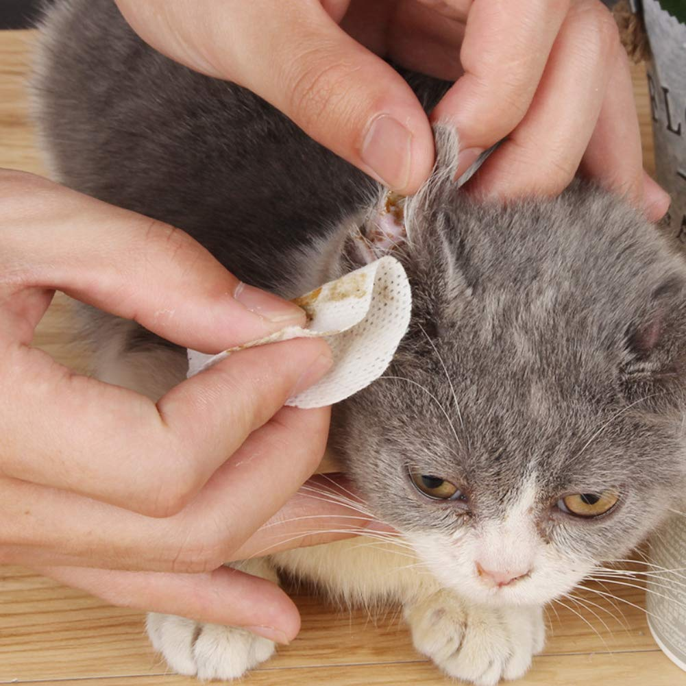 EFINNY Luxsea - Toallitas limpiadoras para Mascotas (100 ...