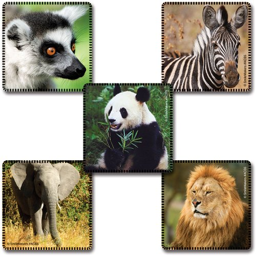 Favorite Animals Stickers 100-pak