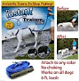 The Instant Trainer Leash - For Dogs Over 30 lbs - As Seen on TV