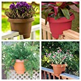 "Bloem Deck Balcony Rail Planter 12"" Terra Cotta"