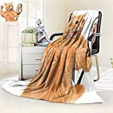 YOYI-HOME Soft Warm Cozy Throw Duplex Printed Blanket Looking into The Mirror and Seeing a Reflection of a Lion Digital Image White and Apricot Anti-Static,2 Ply Thick,Hypoallergenic/W59 x H79