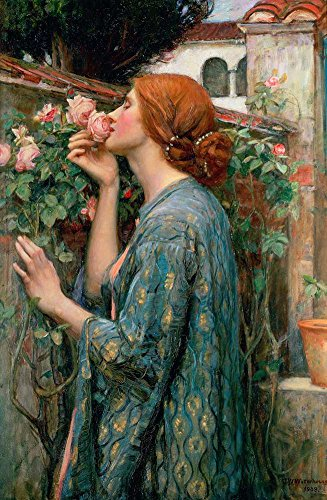 - Canvas Art Print Reproduction Unmounted - 40X60cm (Approx. 16X24inch) The Soul of The Rose Or My Sweet Rose by John William Waterhouse - Mythology Paintings Giclee Picture
