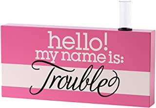 product image for Danielson Designs Name is Trouble Bud Vase Sign