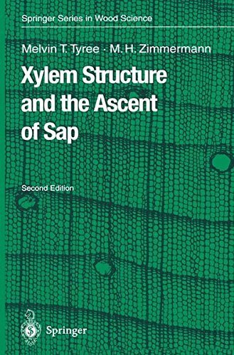 Xylem Structure and the Ascent of Sap (Springer Series in Wood Science) Pdf