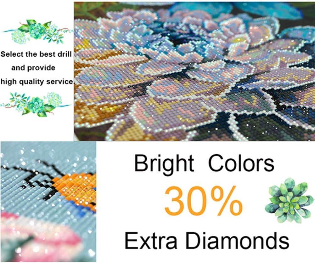 30 * 40Cm 5D Diamante Kit De Pinturafull Diamond Bordadopara El Hogar Decoraci/ón-Atrapasue/ños