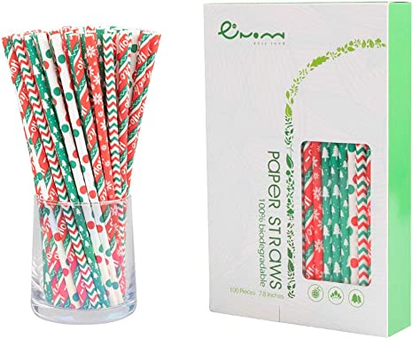 Watermelon Paper Straws Pack of 100 Biodegradable and Disposable