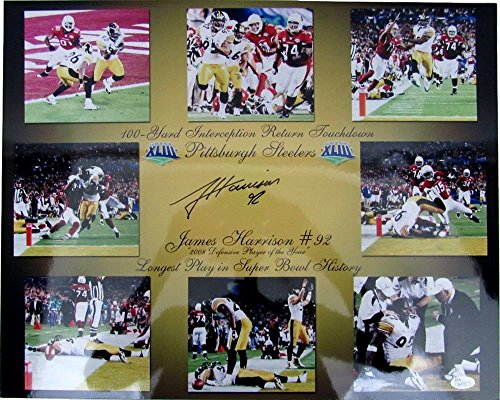 (James Harrison Pittsburgh Steelers Signed Super Bowl 43 16x20 Photo JSA 130439)