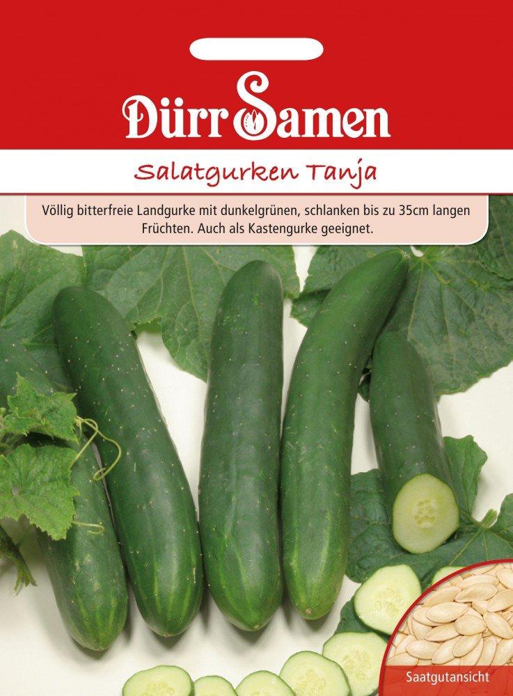 Gurkensamen Salatgurke Tanja von D/ürr-Samen