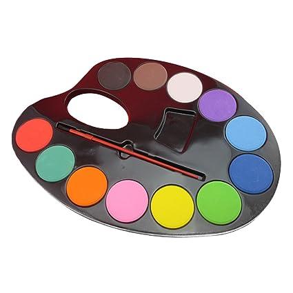 Juego de pinturas de 12 colores para artistas, con paleta y ...