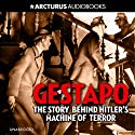 Gestapo: The Story Behind Hitler's Machine of Terror Audiobook by Lucas Saul Narrated by Dugald Bruce Lockhart