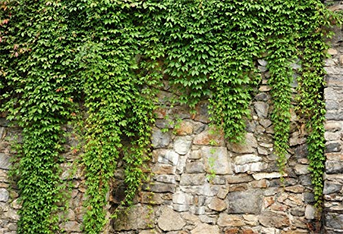 Laeacco 10x7ft Rustic Rock Wall Green Ivy Scenic Backdrop Vinyl Spring Scenic Background Child Adult Portrait Shoot Landscape Wallpaper Stage Drama Event Activities Video Studio Props