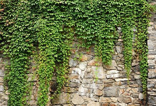 Laeacco 10x6.5ft Rustic Rock Wall Green Ivy Scenic Backdrop Vinyl Spring Scenic Background Child Adult Portrait Shoot Landscape Wallpaper Event Activities Video Studio Props