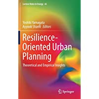 Resilience-Oriented Urban Planning: Theoretical and Empirical Insights (Lecture Notes in Energy)