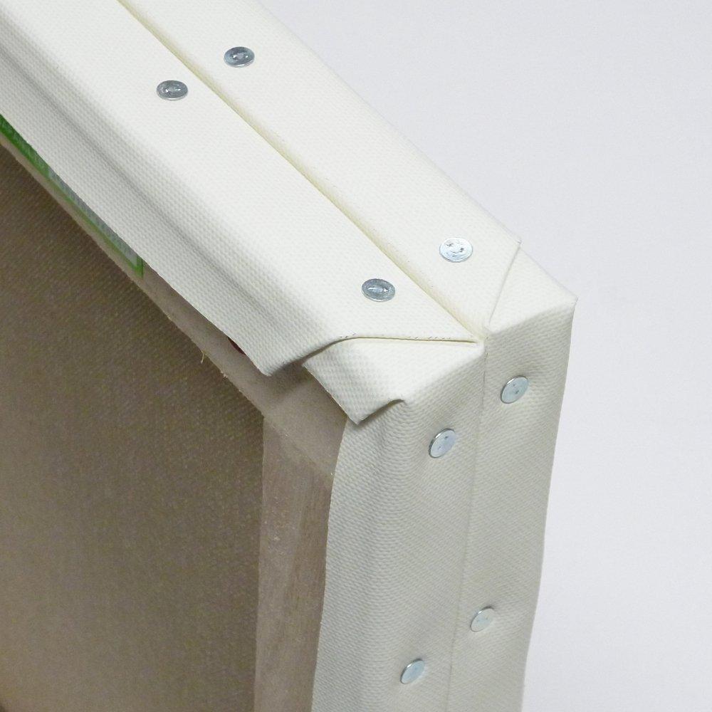 ホワイト 張りキャンバス F80 桐木枠 2枚パック   B00IHD7OMO
