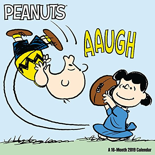 Book cover from Peanuts Wall Calendar (2019) by Day Dream
