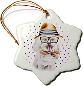 3dRose Cute Funny Dog Illustration on Polkadots- Bishon-Freeze - Ornaments (ORN_275100_1)