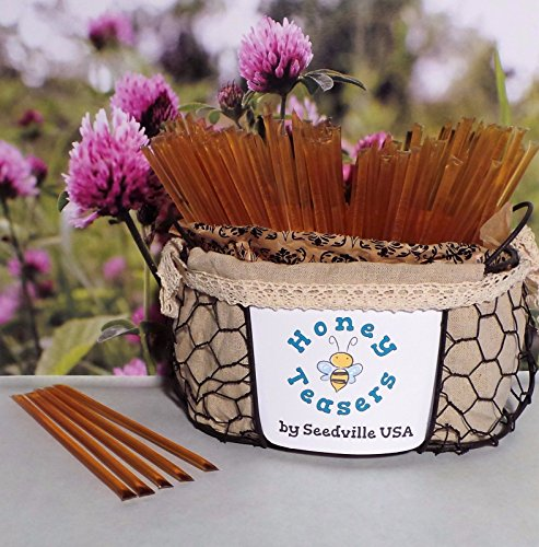 OSSOM HONEY TEASERS Natural Snack Sticks Honeystix Straws CLOVER (Honeystix Straws)