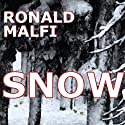 Snow Audiobook by Ronald Malfi Narrated by Jeff Pringle