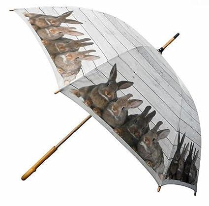 Paraguas conejo familia