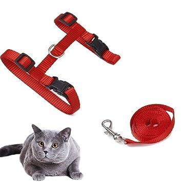 ASOCEA Nylon para Mascotas Gato Gatito Plomo Correa arnés Set Rojo: Amazon.es: Productos para mascotas