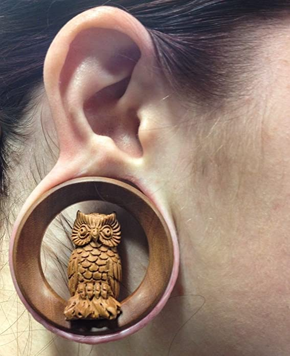 Price Per 1 Elementals Organics 3D Perching Owl on SABA Wood Tunnel 20mm up to 50mm