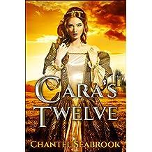 Cara's Twelve (English Edition)