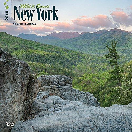 new york nature - 7