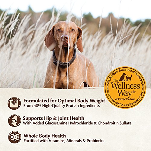 Wellness CORE Natural Grain Free Dry Dog Food, Large Breed, 26-Pound Bag by WELLNESS CORE (Image #4)
