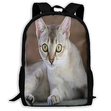 Mochila Interesante para Gatos con Cremallera, Mochila Escolar ...